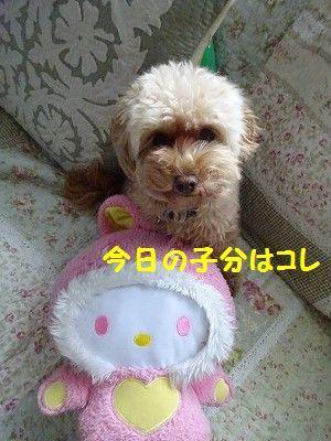 ★祝★入園・・大きくなったね~_e0222588_18064902.jpg