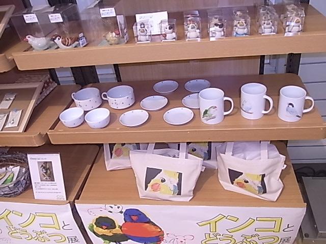東急ハンズ江坂店「インコとどうぶつ展」全体の様子_d0322493_30526.jpg