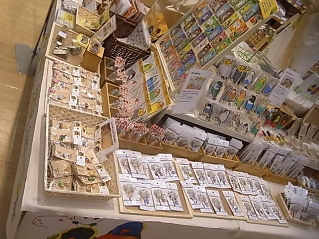 東急ハンズ江坂店「インコとどうぶつ展」全体の様子_d0322493_313535.jpg