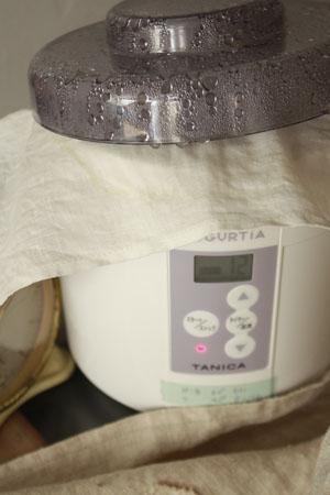 食べ物の手作り~ヨーグルト・納豆・いわしのみりん干し_f0208315_10213446.jpg