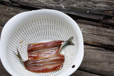 食べ物の手作り~ヨーグルト・納豆・いわしのみりん干し_f0208315_10321696.jpg