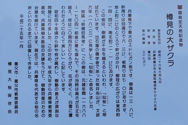 d0145745_1847233.jpg