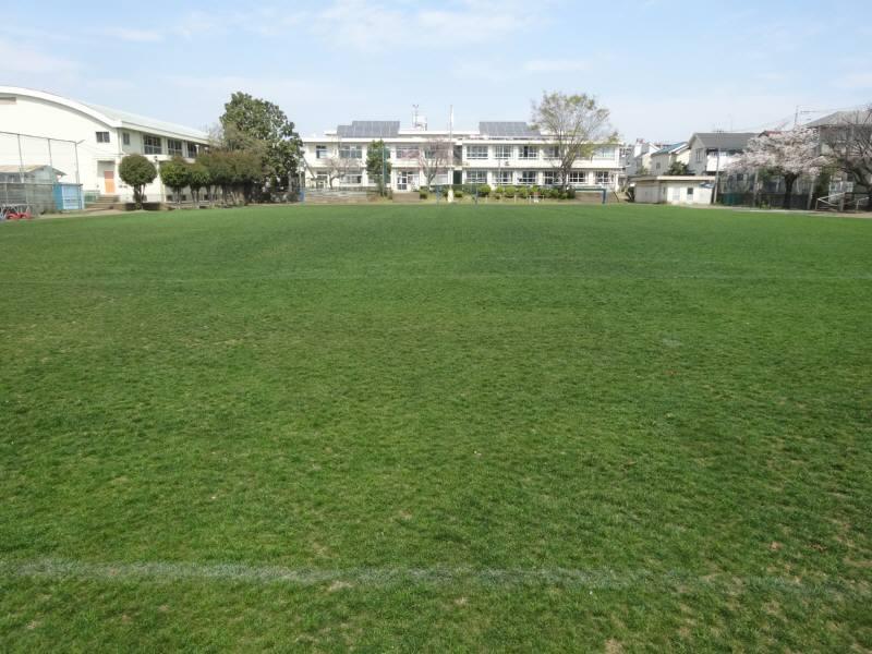 今年最初の芝刈り_f0059673_2291565.jpg