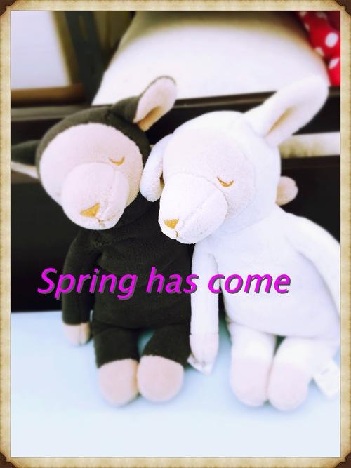 春の新作!!_a0135191_036782.jpg