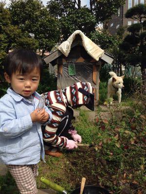庭遊び_a0188798_1643432.jpg