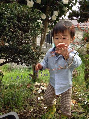 庭遊び_a0188798_1643695.jpg