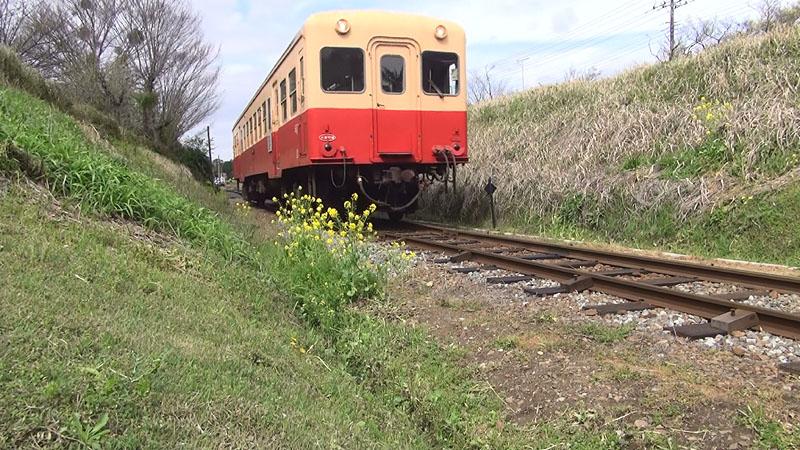 小湊鉄道沿線の旅_b0114798_17285327.jpg