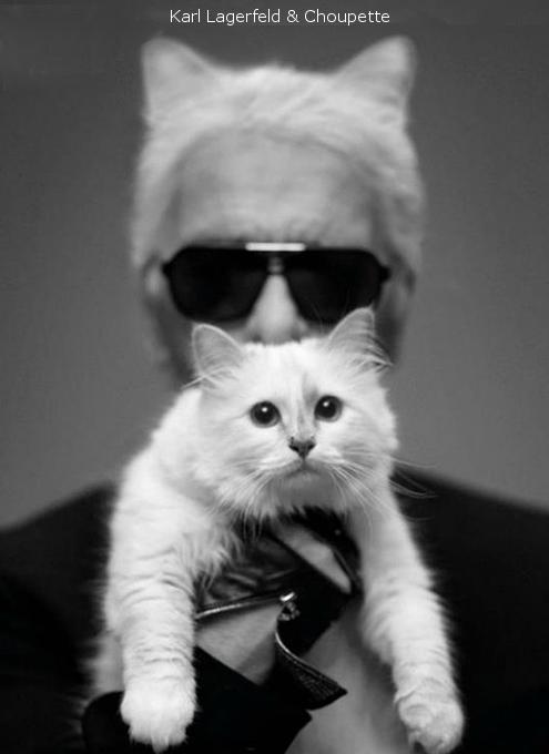 世界一有名な猫ちゃん、カール・ラガーフェルドさんの愛猫シュペットちゃん、昨年400万ドルほど稼ぐ?!_b0007805_19283376.jpg