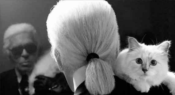 世界一有名な猫ちゃん、カール・ラガーフェルドさんの愛猫シュペットちゃん、昨年400万ドルほど稼ぐ?!_b0007805_19301129.jpg