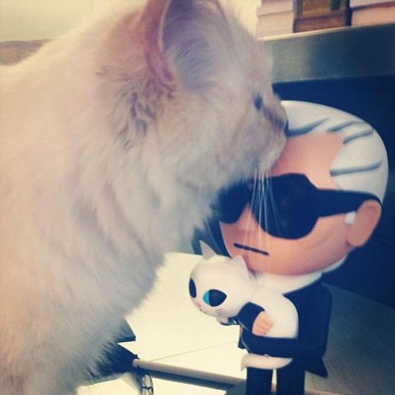 世界一有名な猫ちゃん、カール・ラガーフェルドさんの愛猫シュペットちゃん、昨年400万ドルほど稼ぐ?!_b0007805_19304288.jpg