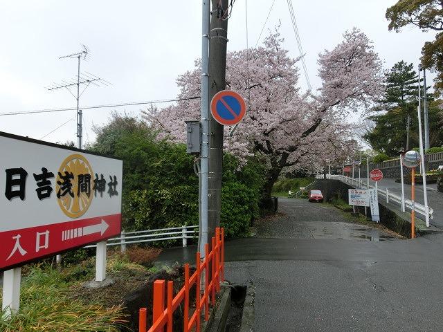 吉原公園再整備に合わせ、「富士山東泉院」の利活用にどう取り組むかが急務_f0141310_7474176.jpg