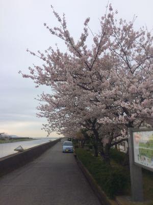 春の海は_e0295731_15374463.jpg
