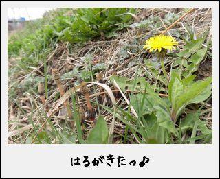 c0259934_15584866.jpg
