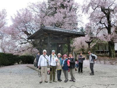 我が町シリーズ日野春(桜)_f0019247_10243059.jpg