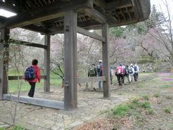 我が町シリーズ日野春(桜)_f0019247_1029471.jpg