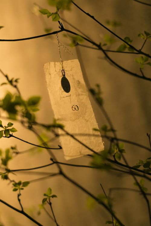 Rêve de printemps  ~春の夜の夢~_d0162257_7552648.jpg