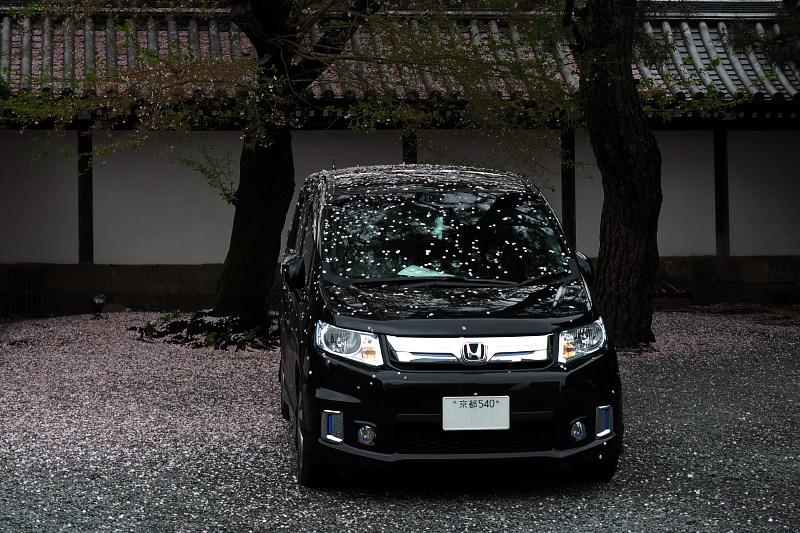 桜  2015 <仏光寺>                         _f0021869_062396.jpg