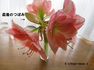 f0233869_1038927.jpg