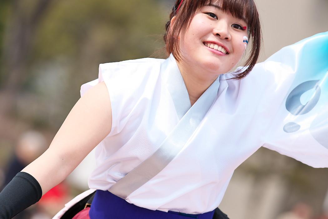 東海大学 響・Posso ballare?MG@がんこ祭(浜よさ)2015_c0187584_22581369.jpg
