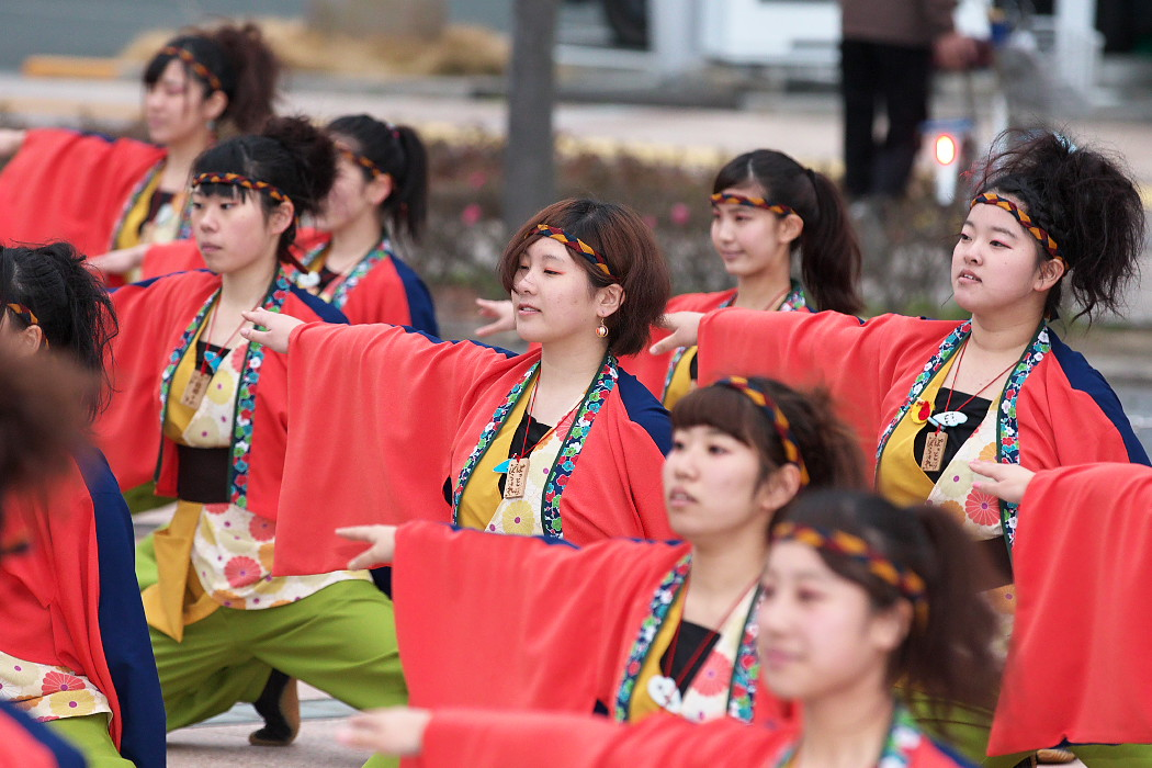 東海大学 響・Posso ballare?MG@がんこ祭(浜よさ)2015_c0187584_2302472.jpg