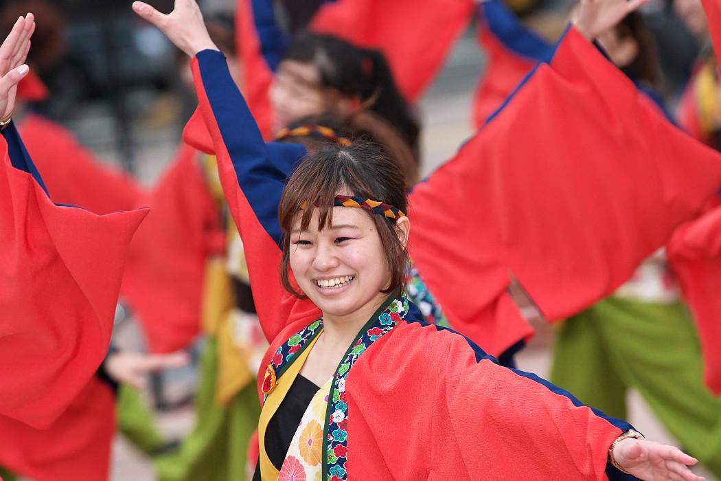 東海大学 響・Posso ballare?MG@がんこ祭(浜よさ)2015_c0187584_2303119.jpg