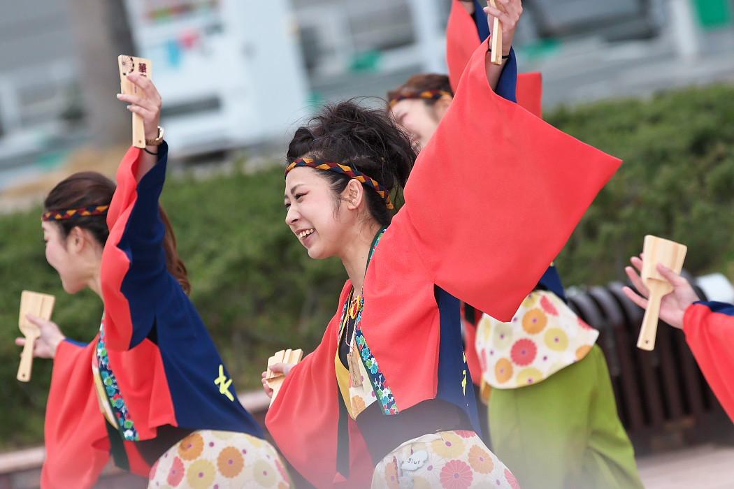 東海大学 響・Posso ballare?MG@がんこ祭(浜よさ)2015_c0187584_230351.jpg