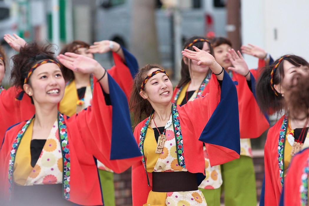 東海大学 響・Posso ballare?MG@がんこ祭(浜よさ)2015_c0187584_2304892.jpg