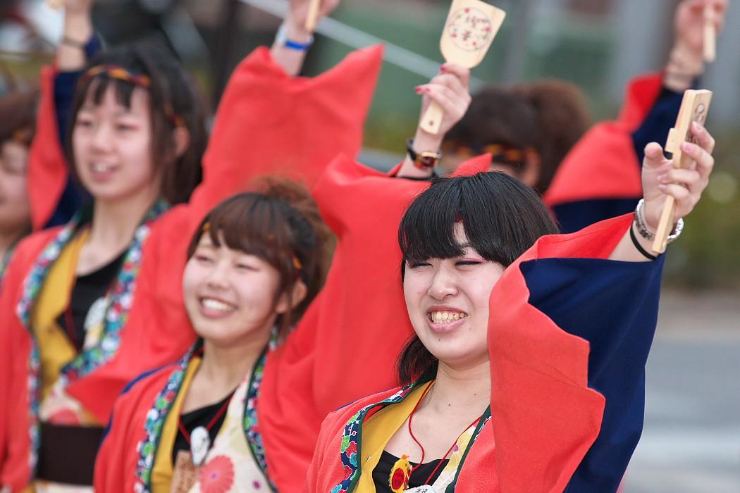 東海大学 響・Posso ballare?MG@がんこ祭(浜よさ)2015_c0187584_230943.jpg