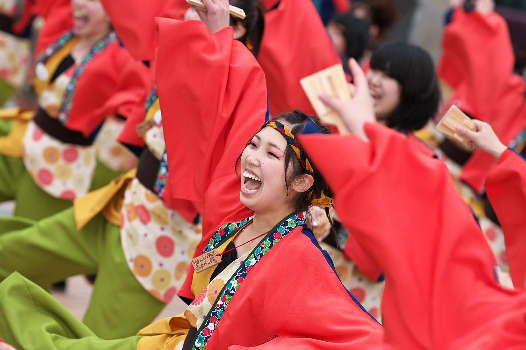 東海大学 響・Posso ballare?MG@がんこ祭(浜よさ)2015_c0187584_231850.jpg