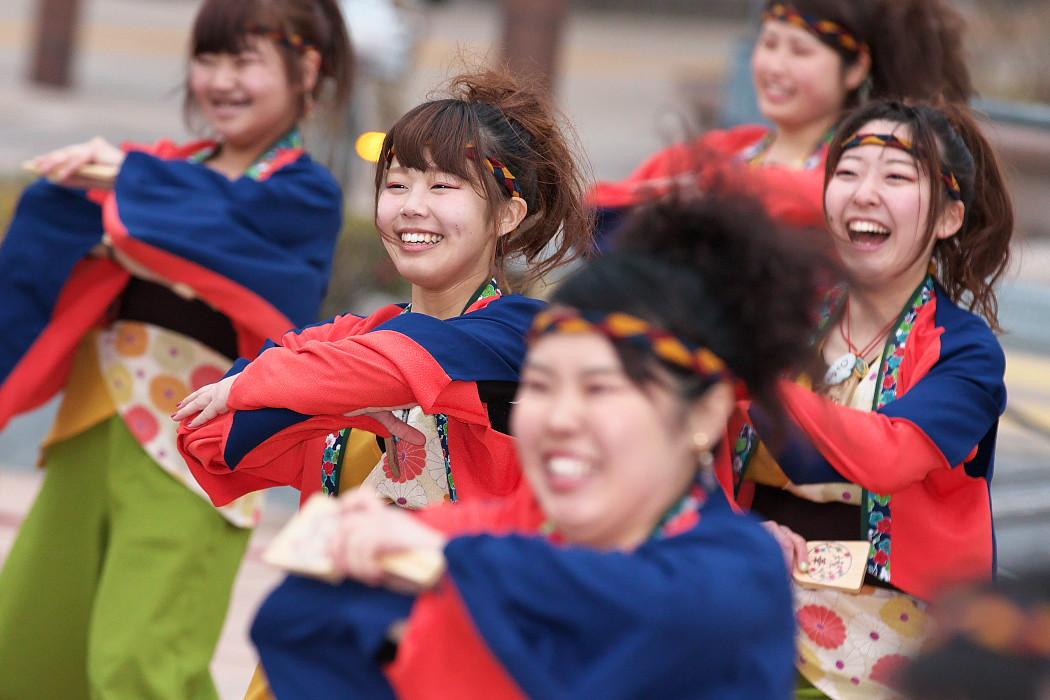 東海大学 響・Posso ballare?MG@がんこ祭(浜よさ)2015_c0187584_2331370.jpg