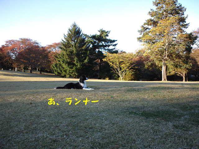 d0224111_15552611.jpg