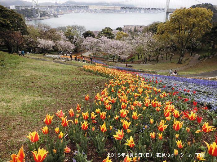 4月例会 花見ウオーク in 下関_b0220064_20413725.jpg
