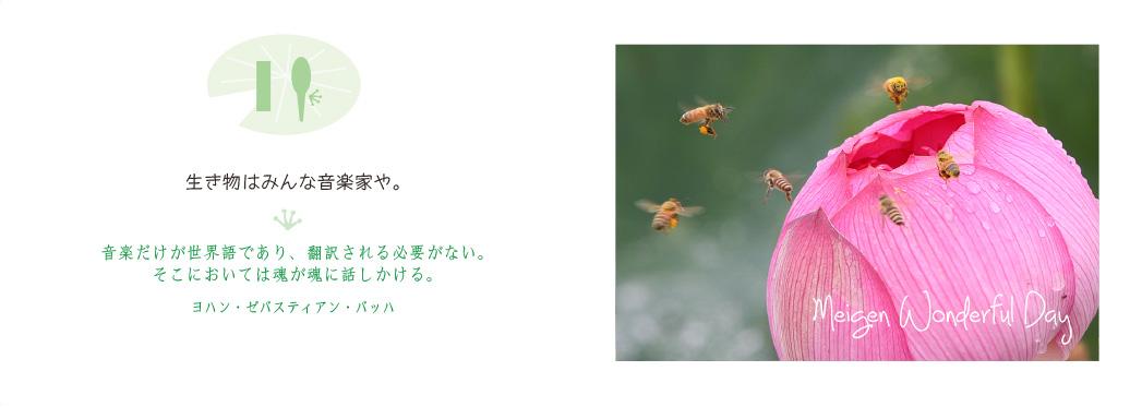 (音楽)名言ワンダフルデー11_f0355165_9421554.jpg