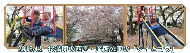 a0052666_026451.jpg