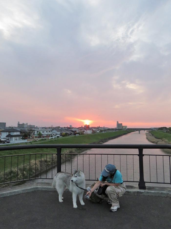 桜の花道を歩いてみました(*^_^*)_c0049299_22574333.jpg