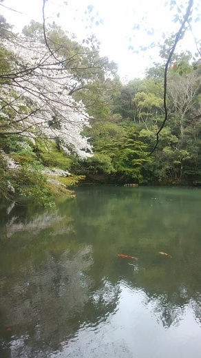 お伊勢詣り_a0088827_22145805.jpg