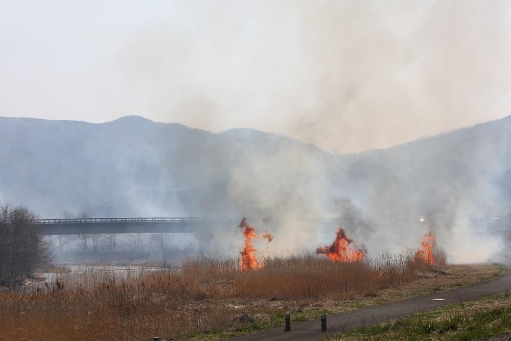 河川の野焼きに_c0111229_190244.jpg