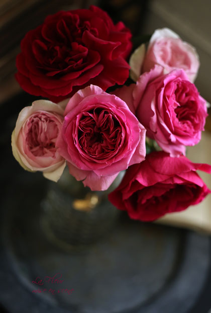 rose boutique エトル・ファシネ_f0127281_15244686.jpg