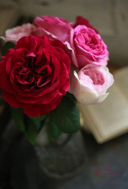 rose boutique エトル・ファシネ_f0127281_15413197.jpg