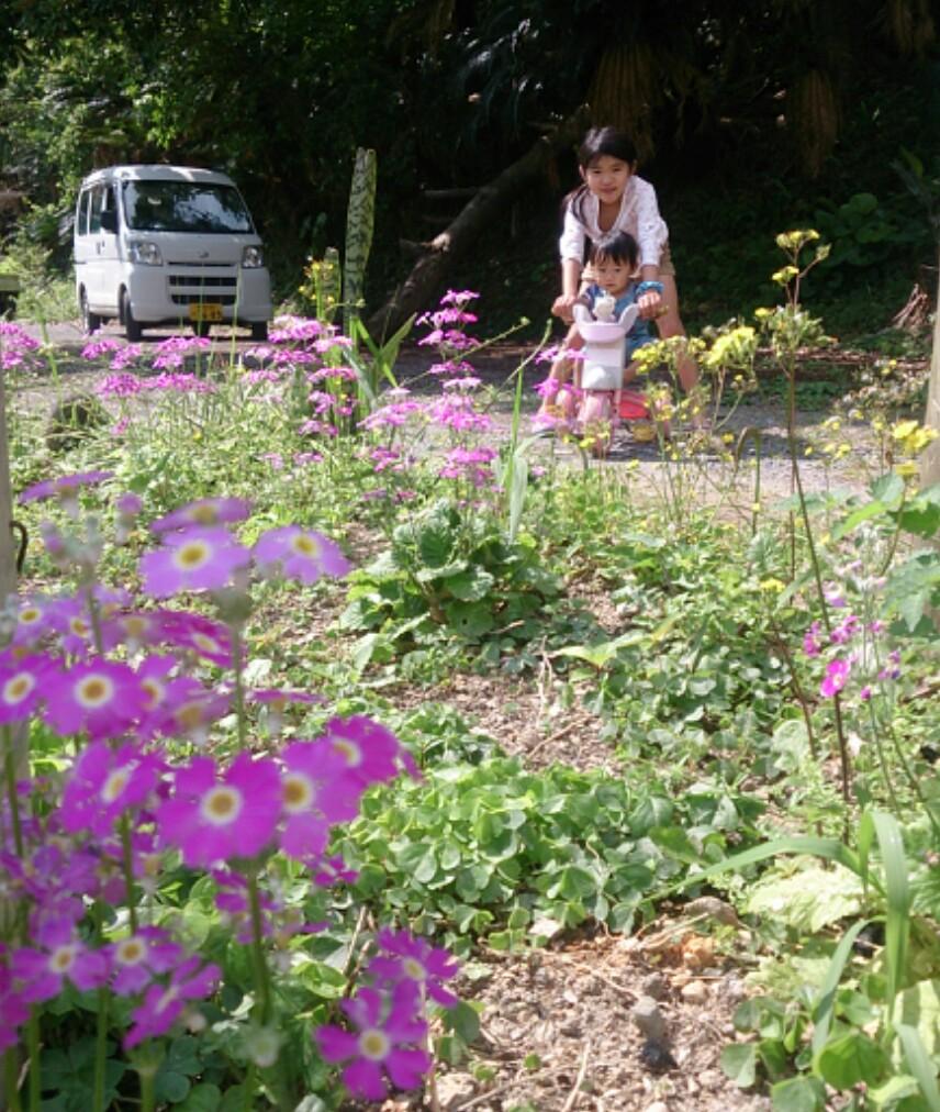春休み日記_e0220493_230775.jpg
