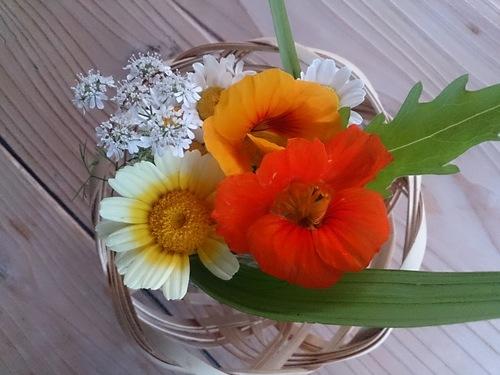 春休み日記_e0220493_230850.jpg