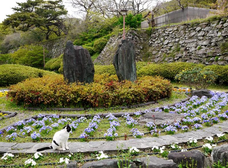 和歌山城公園にて_b0093754_18402545.jpg