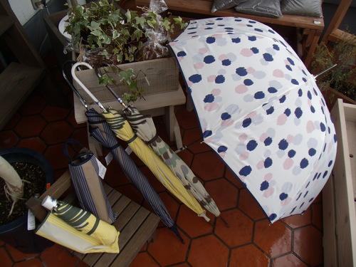 新しい傘で、雨の日もウキウキ♪_d0237564_14185446.jpg
