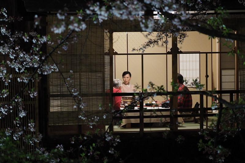 桜  2015 <祇園白川>                         _f0021869_22521225.jpg