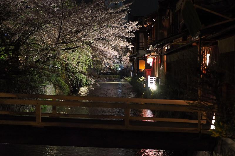 桜  2015 <祇園白川>                         _f0021869_22525385.jpg