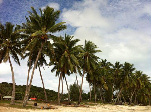 旅日記 クック諸島 2012MAY その11  Aitutaki Pics_f0059796_14393736.jpg