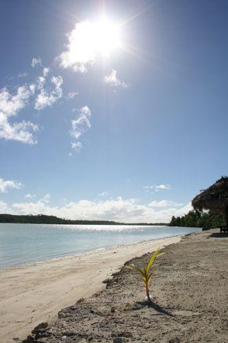 旅日記 クック諸島 2012MAY その11  Aitutaki Pics_f0059796_1440219.jpg