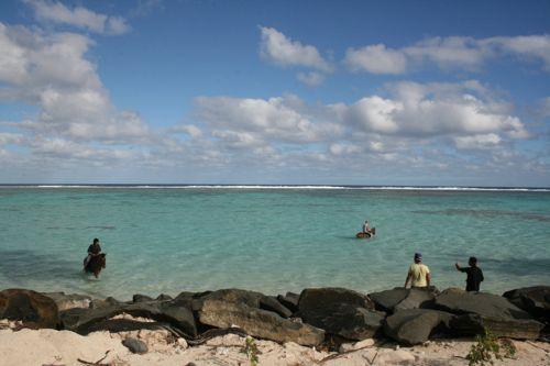 旅日記 クック諸島 2012MAY その15 Sanctuary Rarotonga サンクチュアリーラロトンガ_f0059796_1648421.jpg