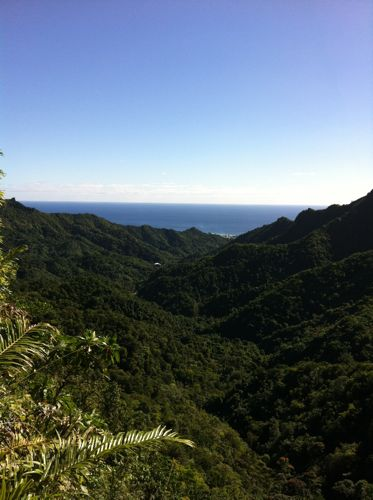 旅日記 クック諸島 2012MAY その16 Paさんのトレッキング_f0059796_17135193.jpg