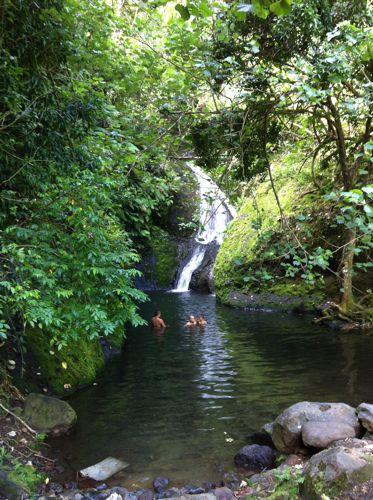 旅日記 クック諸島 2012MAY その16 Paさんのトレッキング_f0059796_1714168.jpg